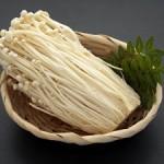 エノキ茶の真価 脂肪を燃焼してダイエットに応用する